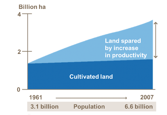 Global estimate of land required