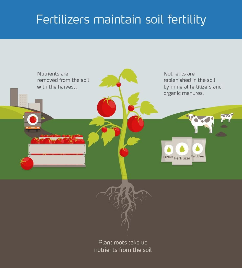 Five important facts about mineral fertilizer | Yara