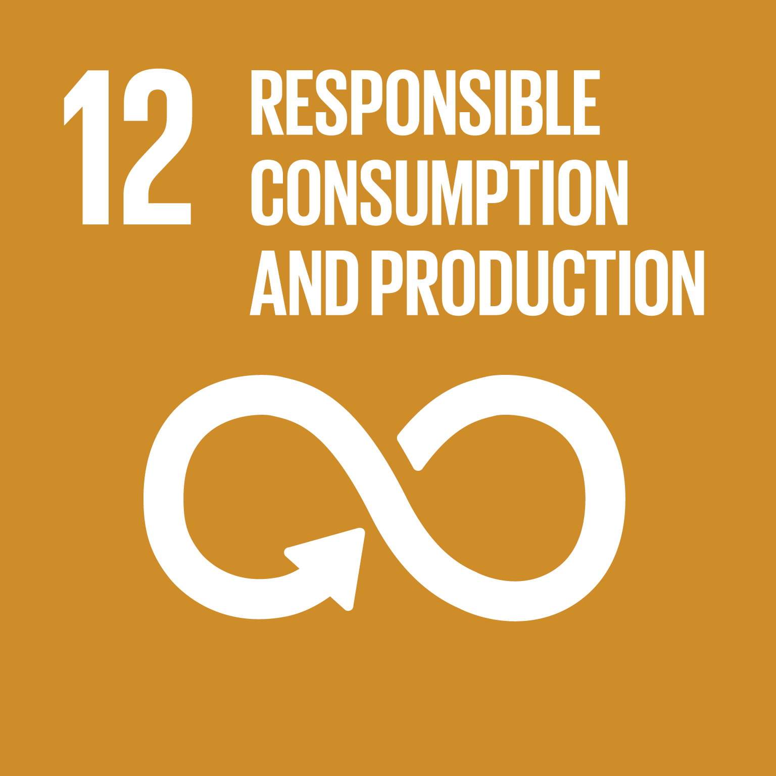 Sustainable Development Goal 12 icon