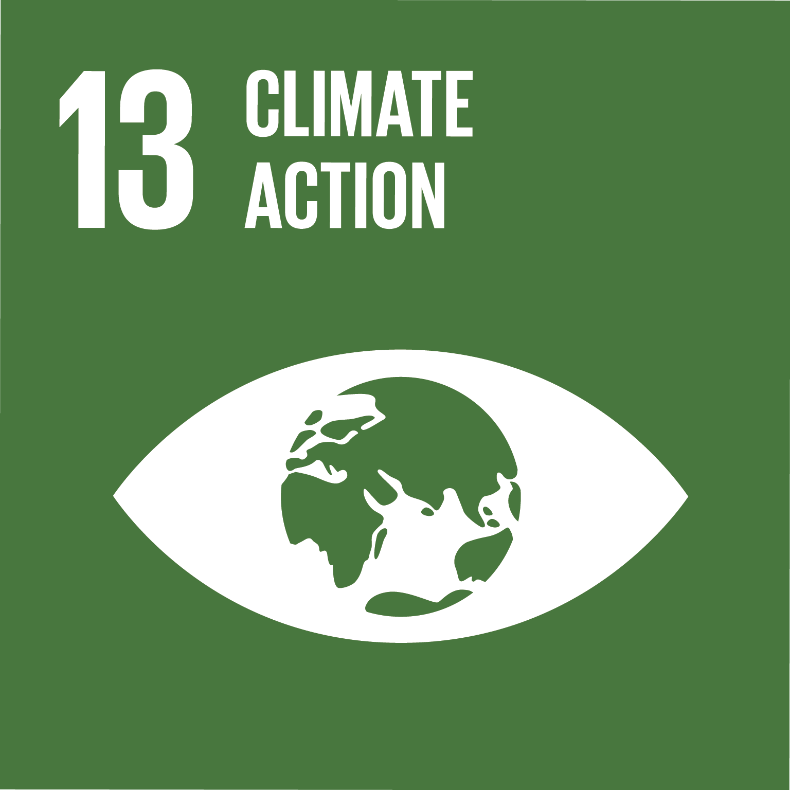 Sustainable Development Goal 13 icon