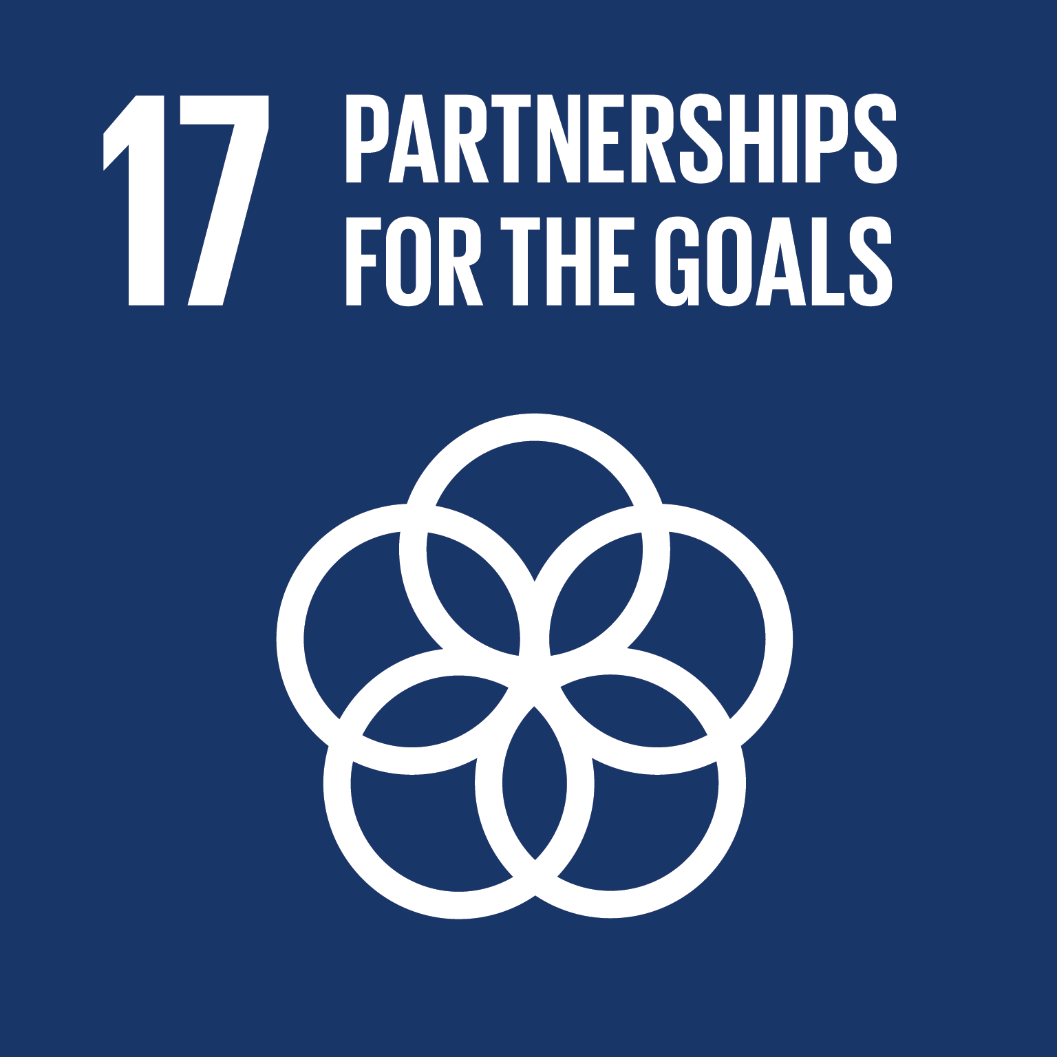 Sustainable Development Goal 17 icon